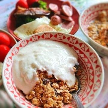 コストコ クエーカー グラノーラ 朝食ヨーグルト
